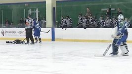 Brutalita v ženské NHL