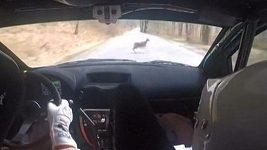 Závodnímu vozu vběhlo při rychlosti 170 km/h do cesty zvíře