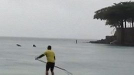 U pláže Copacabana v Riu se objevil žralok velrybí