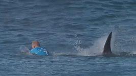 Útok žraloka na surfaře