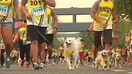 Tisícovka psů a jejich páníčků se zúčastnila běhu v Manille