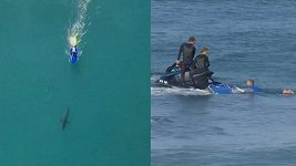 Kvůli žralokovi byl přerušen závod v Jižní Africe