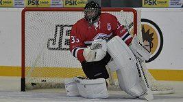 Petr Čech jako hokejový brankář