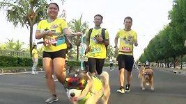 Majitelé a jejich psi závodili v Manille