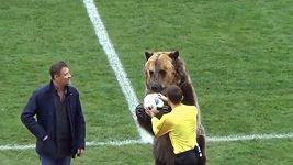 Zvířecí podavač míčů v Rusku