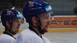 K hokejové reprezentaci se připojil útočník Dallasu Radek Faksa. Měl by patřit k tahounům týmu