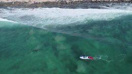 Žralok v JAR opět zlobil surfaře