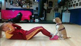 Slovenská zápasnice thajského boxu a K1 Monika Chochlíková trénuje se svým psem