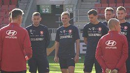 Stihnout Bořek Dočkal a Tomáš Vaclík reprezentační dvojzápas s Anglií a Brazílií?