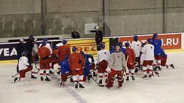 Česká hokejová reprezentace vyhlíží další posilu z NHL