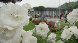 Římský turnaj zažil celodenní pauzu kvůli dešti