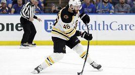 Krejčí, útočník Bostonu, na Stanley Cup nedosáhl.