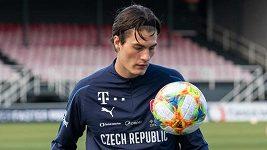 V nominaci fotbalové reprezentace chybí Patrik Schick. Jak to bylo s nátlakem Lipska?