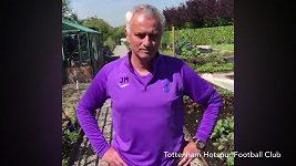 Trenér José Mourinhose stal dobrovolníkem na farmě Tottenhamu Hotspur.