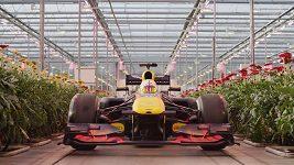 Red Bull si pro fanoušky formule 1 připravil speciální video z Nizozemska