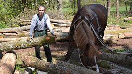 Jde mi hlavně o to, abych si neuřízl ruku nebo nohu, říká dřevorubec Tomáš Janů