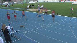 Závodníkům přeběhla pod nohami před cílovou čárou kočka