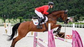 Čeští jezdci i koně musí před odletem na olympiádu do karantény