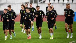 Počet zranění je vysoký. UEFA se nabitým kalendářem zabývá, říká předseda FAČR Petr Fousek
